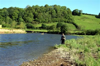 Towy River with David Thomas
