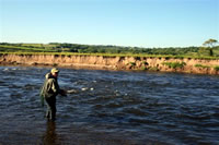 Fishing the River Towy