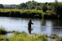 David Thomas on the Towy